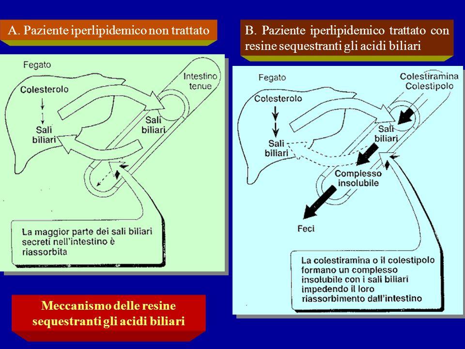 A. Paziente iperlipidemico non trattatoB. Paziente iperlipidemico trattato con resine sequestranti gli acidi biliari Meccanismo delle resine sequestra