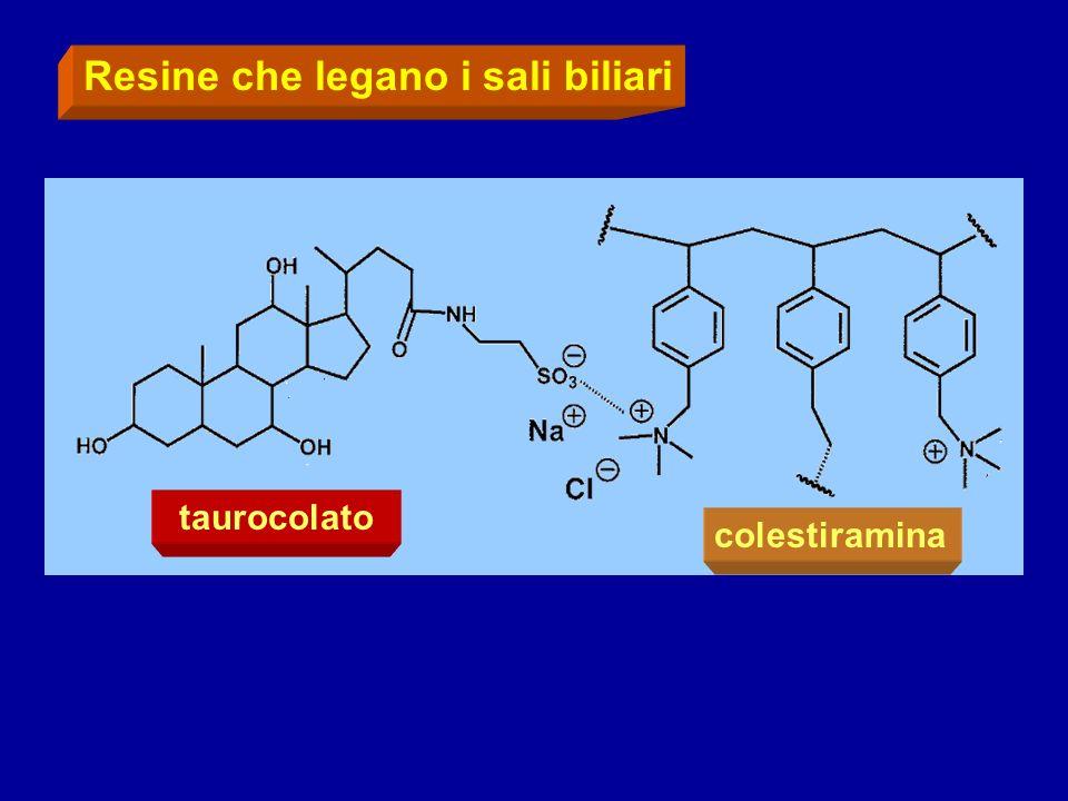 Resine che legano i sali biliari taurocolato colestiramina