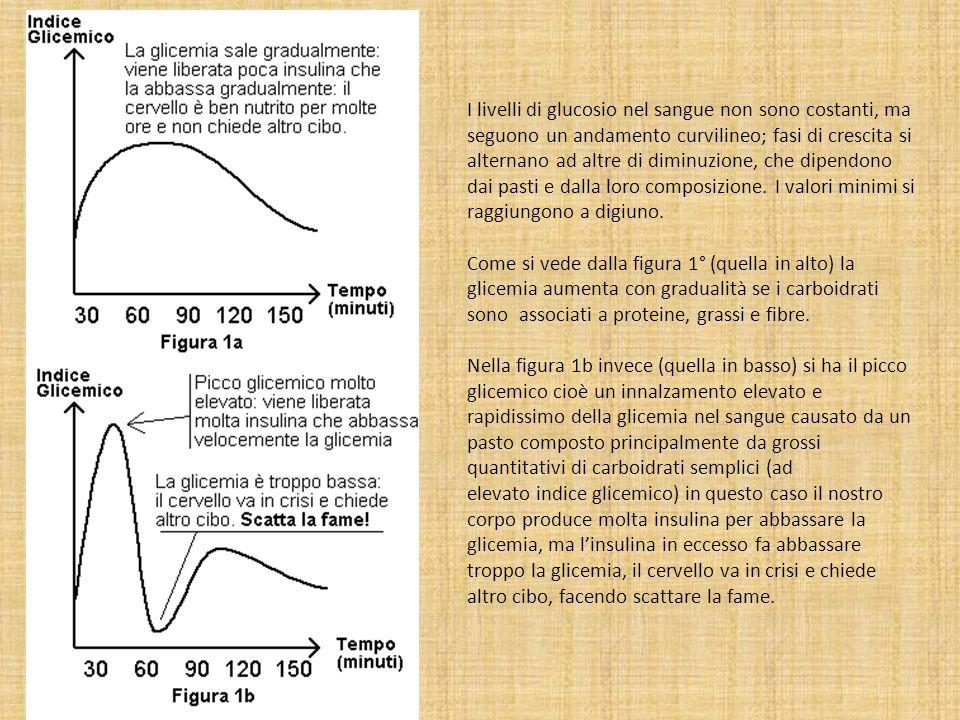 I livelli di glucosio nel sangue non sono costanti, ma seguono un andamento curvilineo; fasi di crescita si alternano ad altre di diminuzione, che dip