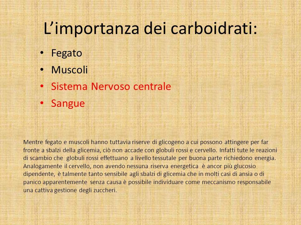 Limportanza dei carboidrati: Fegato Muscoli Sistema Nervoso centrale Sangue Mentre fegato e muscoli hanno tuttavia riserve di glicogeno a cui possono