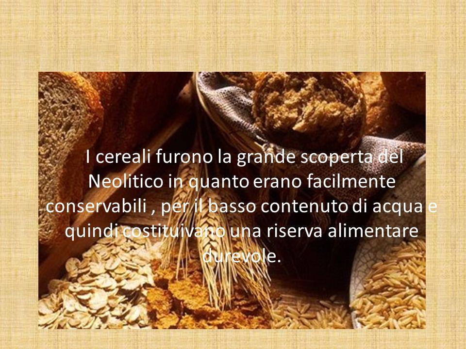 I cereali nella storia 1.Asia 2.Bacino del Mediterraneo 3.Antico Egitto 4.Romani 5.Rinascimento