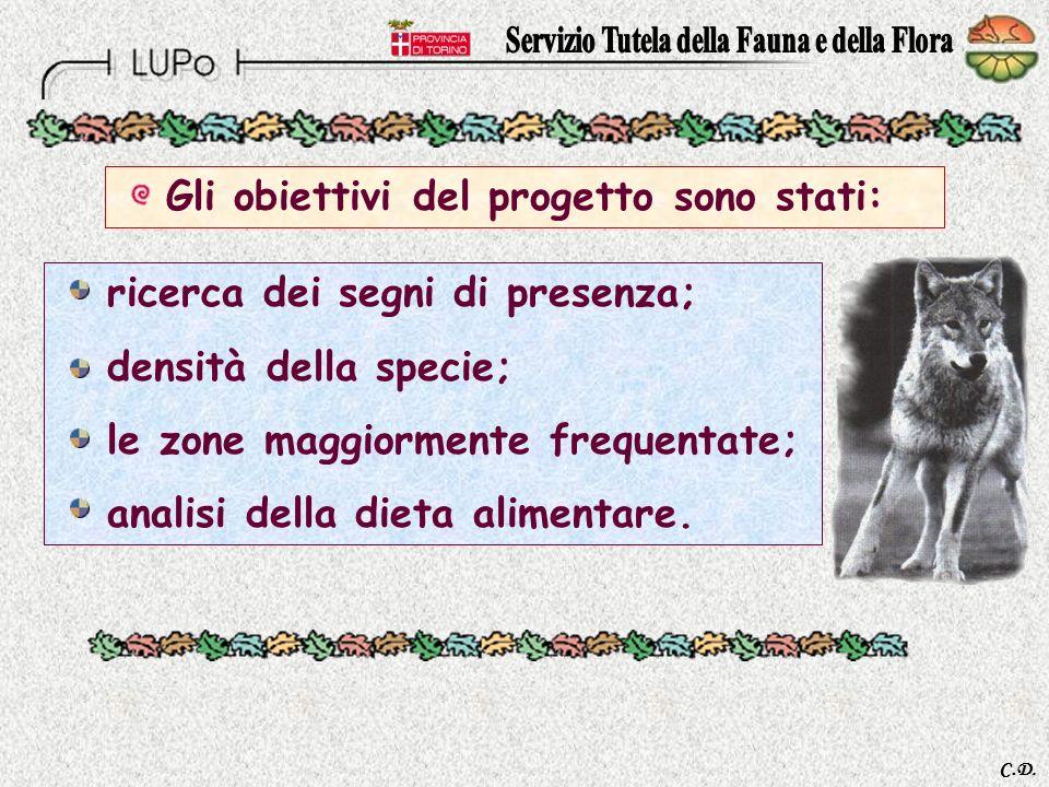 C.D. 1° riproduzione documentata del lupo allinterno del Parco Naturale del Gran Bosco di Salbertrand Progetto Interreg. II Italia – Francia Il Lupo i