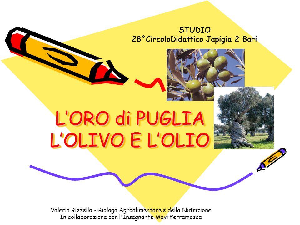 Valeria Rizzello - Biologa Agroalimentare e della Nutrizione In collaborazione con l Insegnante Mavi Ferramosca TANTE VARIETA=TANTI PRODOTTI In Puglia ci sono tante varietà di olivo, ambienti diversi tra costa ed entroterra e natura dei terreni differente, che danno tanti tipi di olio