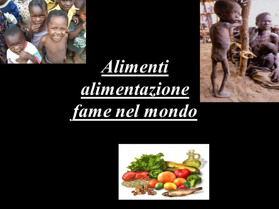 Il problema nel problema La fame nel mondo è un problema che la comunità internazionale dice di star risolvendo tramite la F.A.O.