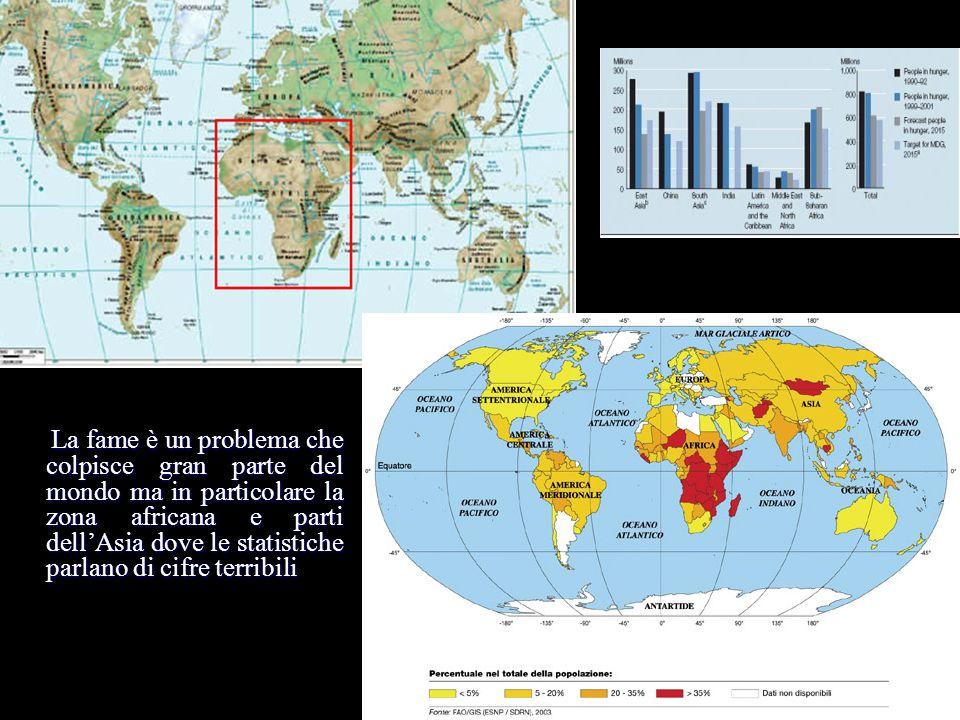 La fame è un problema che colpisce gran parte del mondo ma in particolare la zona africana e parti dellAsia dove le statistiche parlano di cifre terri