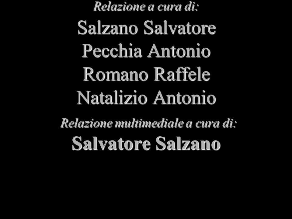Relazione a cura di: Salzano Salvatore Pecchia Antonio Romano Raffele Natalizio Antonio Relazione multimediale a cura di: Salvatore Salzano Relazione