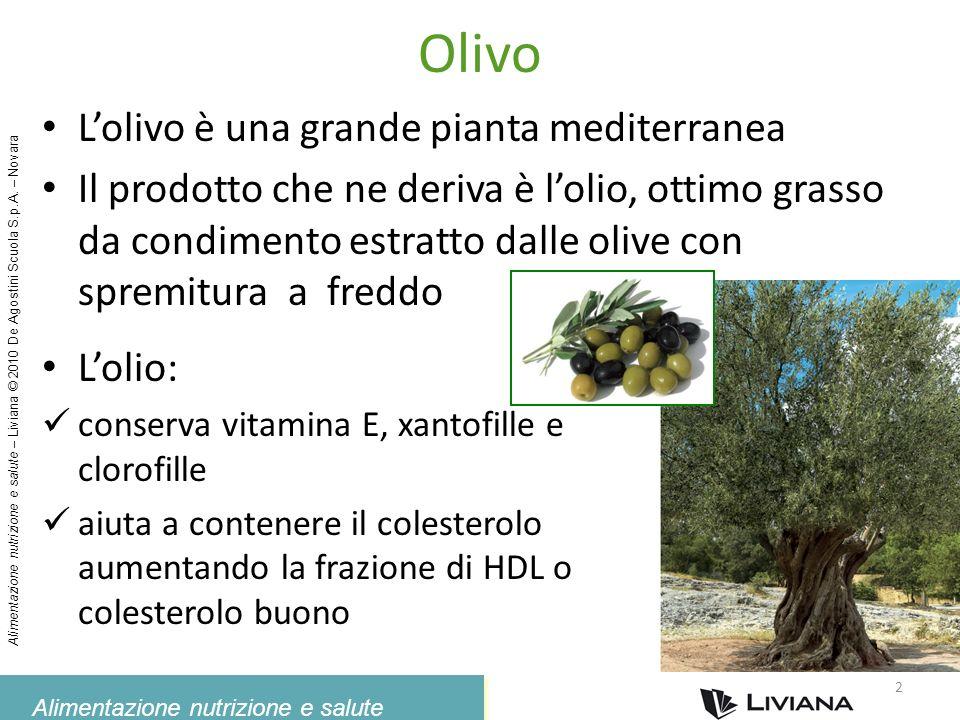 Alimentazione nutrizione e salute Alimentazione nutrizione e salute – Liviana © 2010 De Agostini Scuola S.p.A. – Novara Olivo Lolio: conserva vitamina