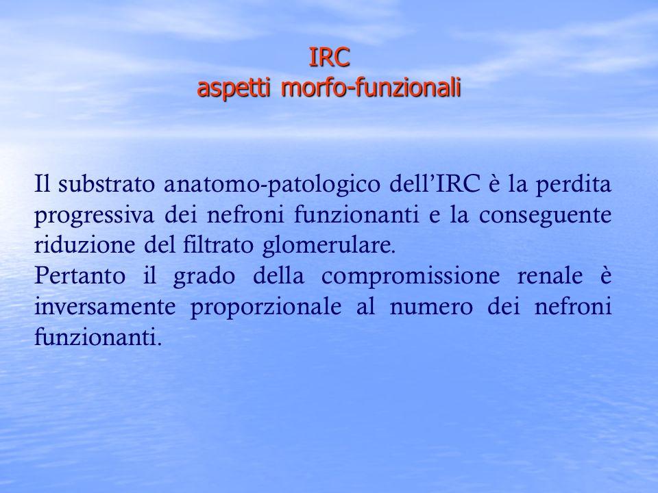 Il substrato anatomo-patologico dellIRC è la perdita progressiva dei nefroni funzionanti e la conseguente riduzione del filtrato glomerulare. Pertanto