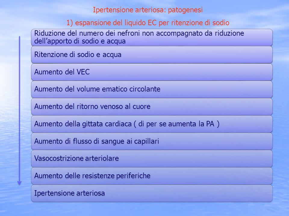 Riduzione del numero dei nefroni non accompagnato da riduzione dellapporto di sodio e acqua Ritenzione di sodio e acquaAumento del VECAumento del volu