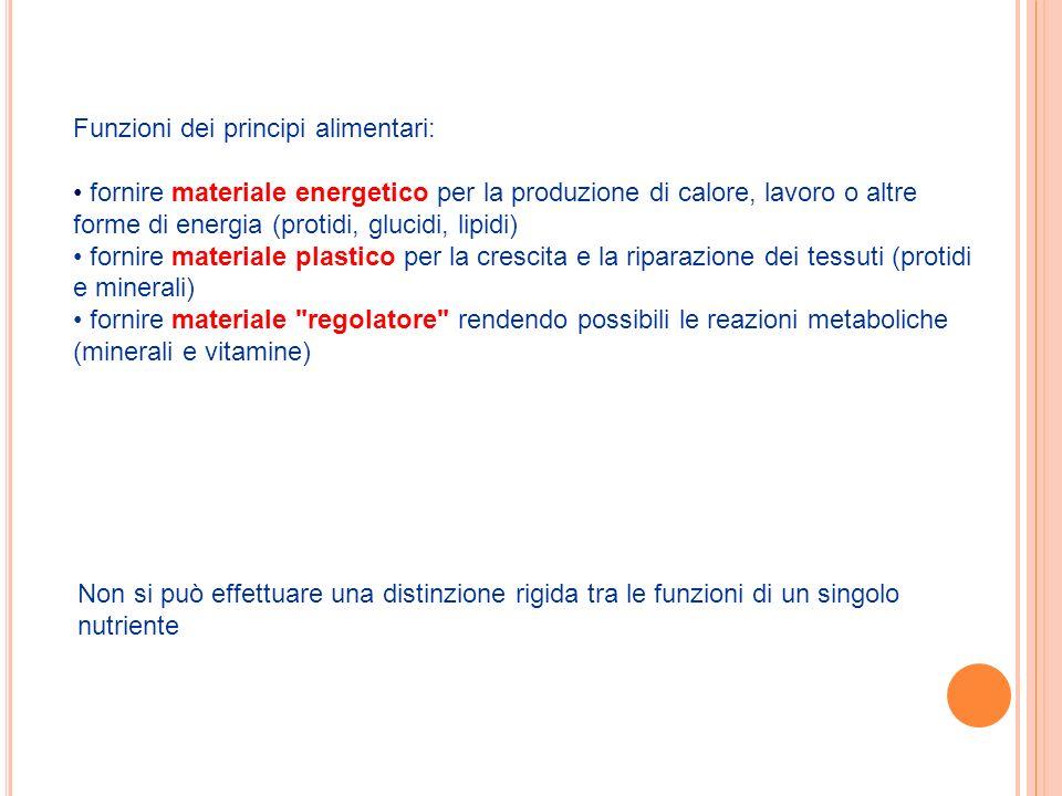 Funzioni dei principi alimentari: fornire materiale energetico per la produzione di calore, lavoro o altre forme di energia (protidi, glucidi, lipidi)