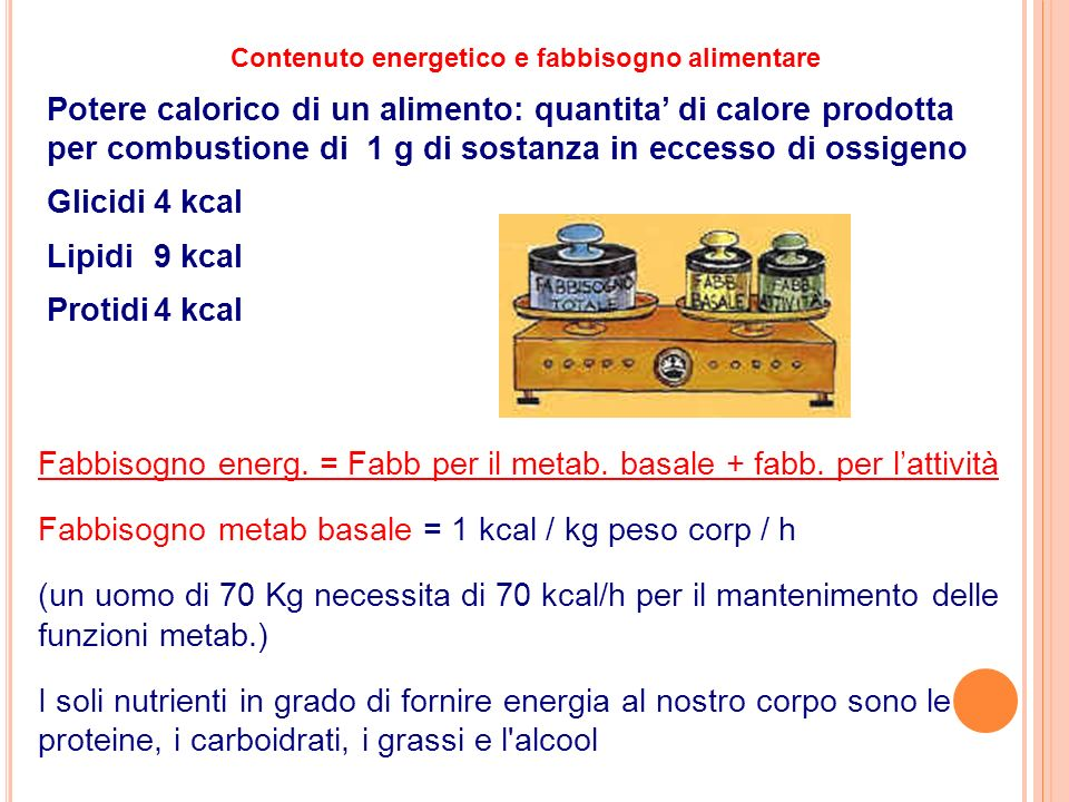 Contenuto energetico e fabbisogno alimentare Potere calorico di un alimento: quantita di calore prodotta per combustione di 1 g di sostanza in eccesso