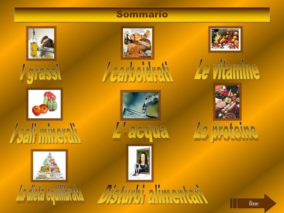 Sommario fine