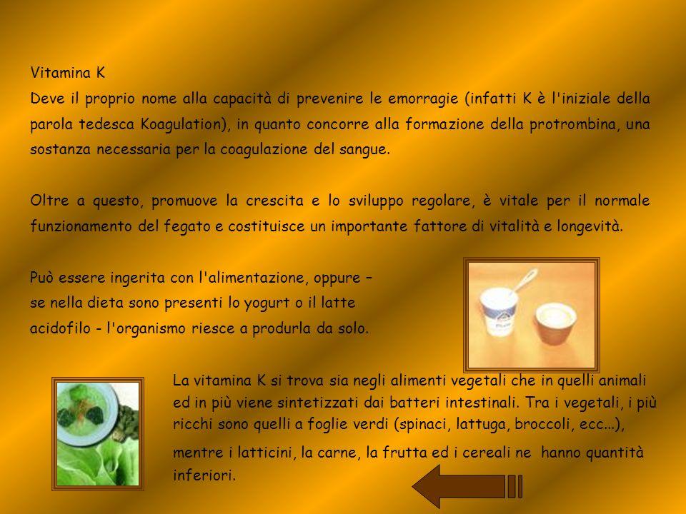 Vitamina K Deve il proprio nome alla capacità di prevenire le emorragie (infatti K è l'iniziale della parola tedesca Koagulation), in quanto concorre