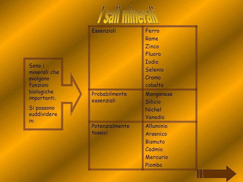 Sono i minerali che svolgono funzioni biologiche importanti. Si possono suddividere in: EssenzialiFerro Rame Zinco Fluoro Iodio Selenio Cromo cobalto