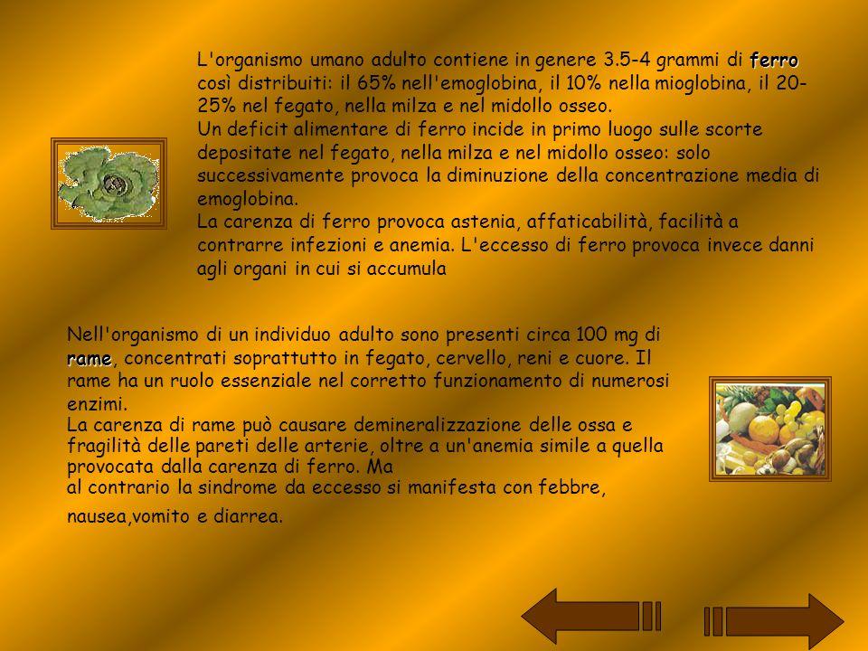 ferro L'organismo umano adulto contiene in genere 3.5-4 grammi di ferro così distribuiti: il 65% nell'emoglobina, il 10% nella mioglobina, il 20- 25%