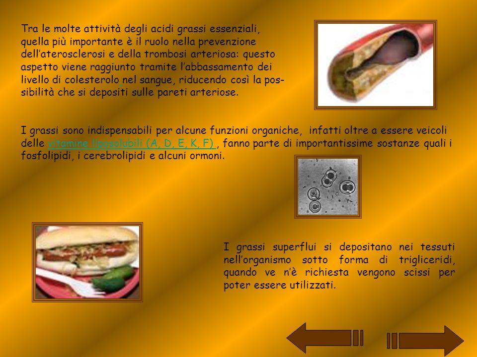 L atto del mangiare nasconde alcuni aspetti molto importanti, che si possono riassumere in due concetti.