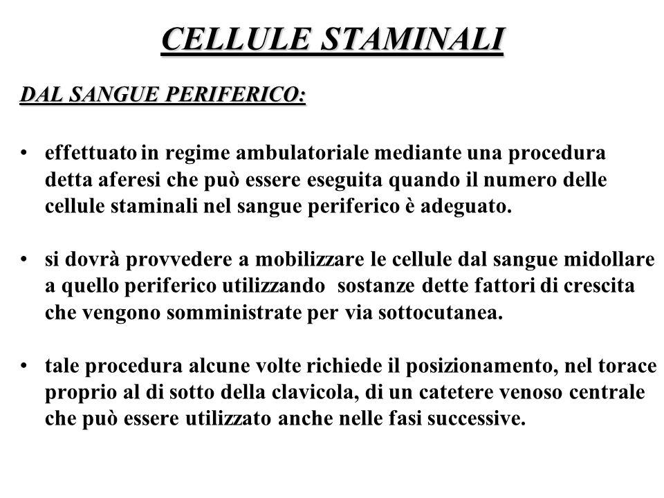 CELLULE STAMINALI DAL SANGUE PERIFERICO: effettuato in regime ambulatoriale mediante una procedura detta aferesi che può essere eseguita quando il num