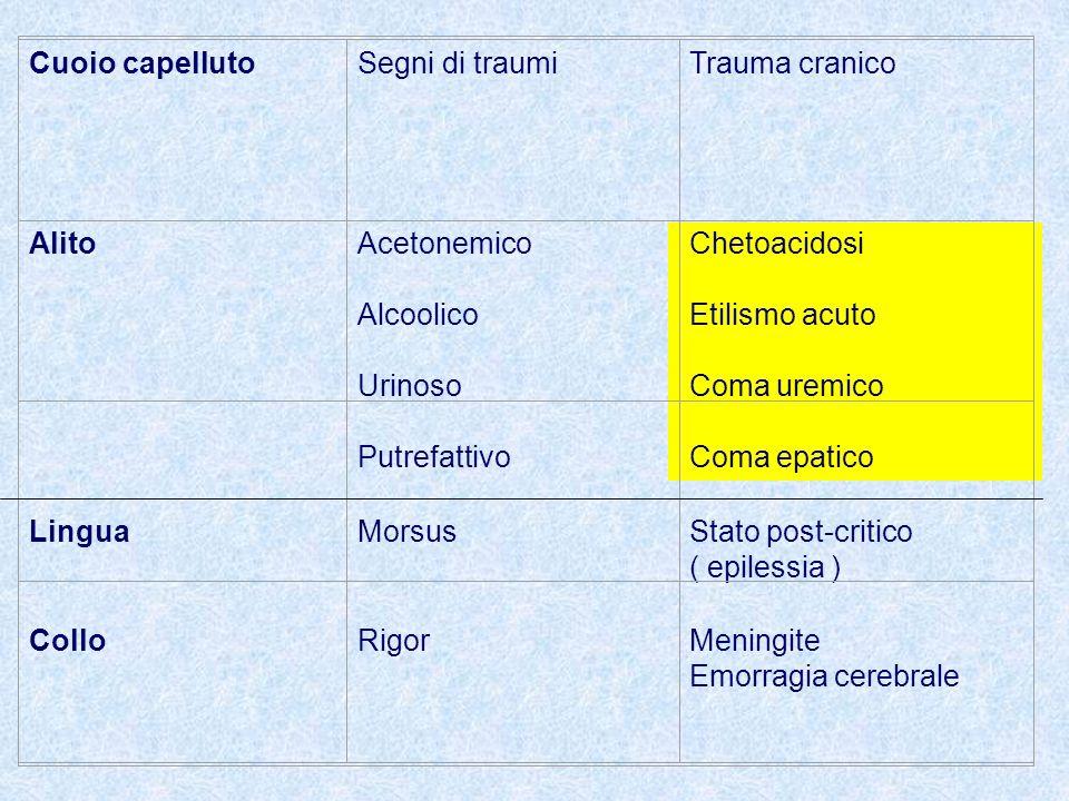 Cuoio capellutoSegni di traumiTrauma cranico AlitoAcetonemico Alcoolico Urinoso Putrefattivo Chetoacidosi Etilismo acuto Coma uremico Coma epatico LinguaMorsusStato post-critico ( epilessia ) ColloRigorMeningite Emorragia cerebrale