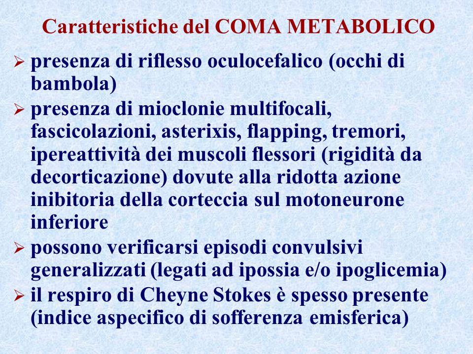 Caratteristiche del COMA METABOLICO presenza di riflesso oculocefalico (occhi di bambola) presenza di mioclonie multifocali, fascicolazioni, asterixis
