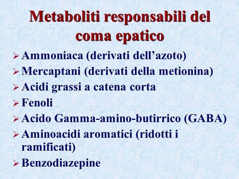 Metaboliti responsabili del coma epatico Ammoniaca (derivati dellazoto) Mercaptani (derivati della metionina) Acidi grassi a catena corta Fenoli Acido Gamma-amino-butirrico (GABA) Aminoacidi aromatici (ridotti i ramificati) Benzodiazepine