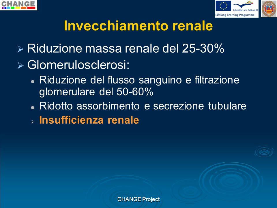 Invecchiamento renale Riduzione massa renale del 25-30% Glomerulosclerosi: Riduzione del flusso sanguino e filtrazione glomerulare del 50-60% Ridotto
