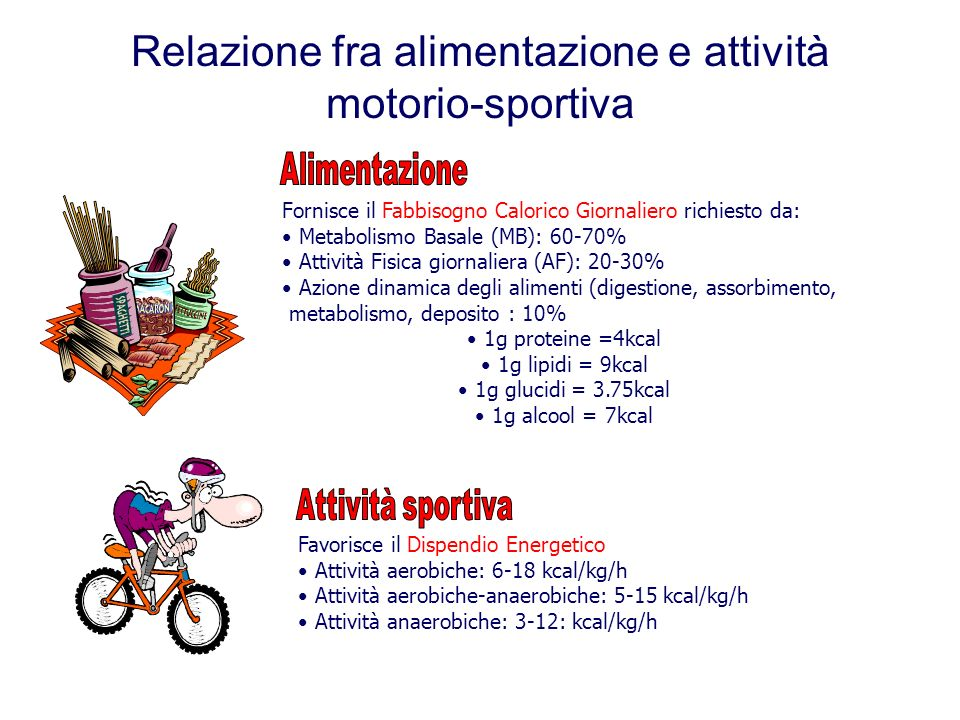 Relazione fra alimentazione e attività motorio-sportiva Fornisce il Fabbisogno Calorico Giornaliero richiesto da: Metabolismo Basale (MB): 60-70% Attività Fisica giornaliera (AF): 20-30% Azione dinamica degli alimenti (digestione, assorbimento, metabolismo, deposito : 10% 1g proteine =4kcal 1g lipidi = 9kcal 1g glucidi = 3.75kcal 1g alcool = 7kcal Favorisce il Dispendio Energetico Attività aerobiche: 6-18 kcal/kg/h Attività aerobiche-anaerobiche: 5-15 kcal/kg/h Attività anaerobiche: 3-12: kcal/kg/h