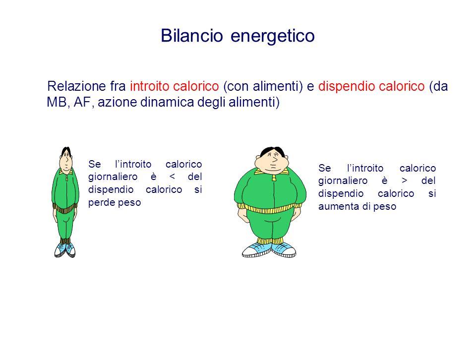 Bilancio energetico Relazione fra introito calorico (con alimenti) e dispendio calorico (da MB, AF, azione dinamica degli alimenti) Se lintroito calorico giornaliero è < del dispendio calorico si perde peso Se lintroito calorico giornaliero è > del dispendio calorico si aumenta di peso