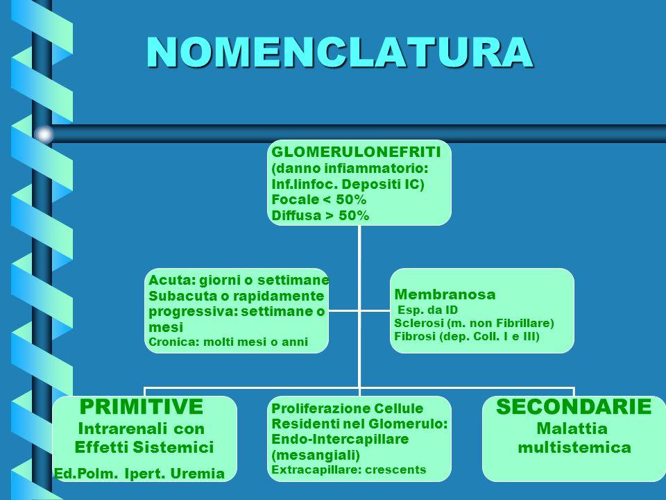 NOMENCLATURA GLOMERULONEFRITI (danno infiammatorio: Inf.linfoc. Depositi IC) Focale < 50% Diffusa > 50% PRIMITIVE Intrarenali con Effetti Sistemici Ed