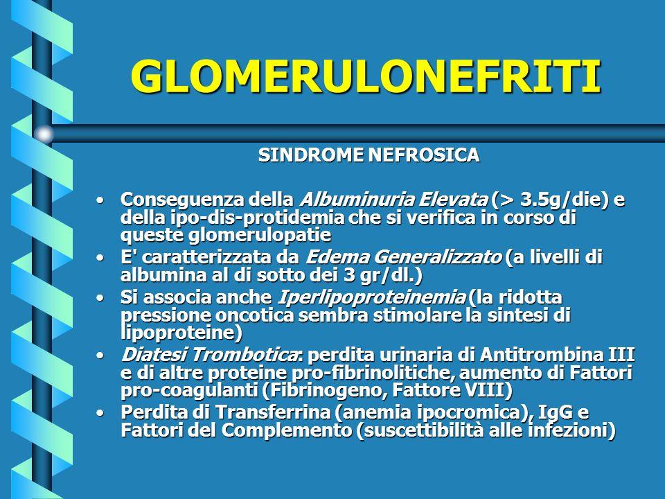 SINDROME NEFROSICA Conseguenza della Albuminuria Elevata (> 3.5g/die) e della ipo-dis-protidemia che si verifica in corso di queste glomerulopatieCons