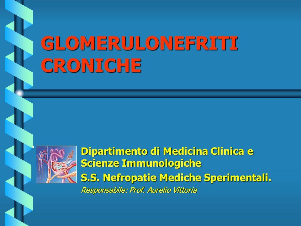 Dipartimento di Medicina Clinica e Scienze Immunologiche S.S. Nefropatie Mediche Sperimentali. Responsabile: Prof. Aurelio Vittoria GLOMERULONEFRITI C
