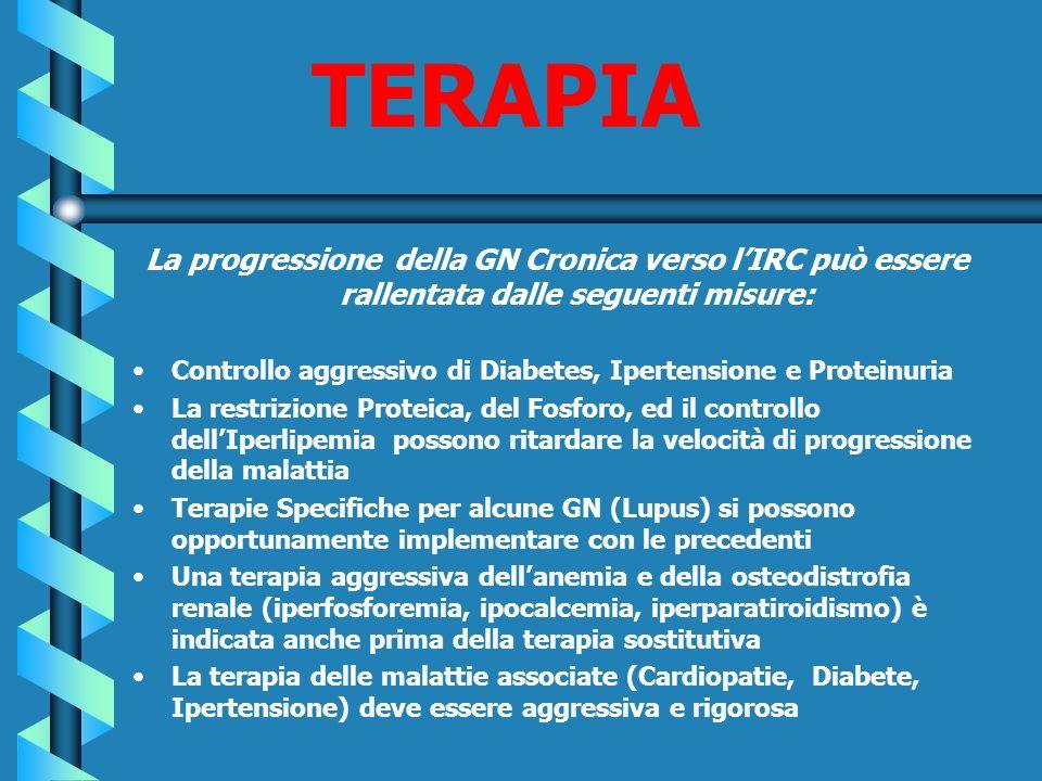 TERAPIA La progressione della GN Cronica verso lIRC può essere rallentata dalle seguenti misure: Controllo aggressivo di Diabetes, Ipertensione e Prot