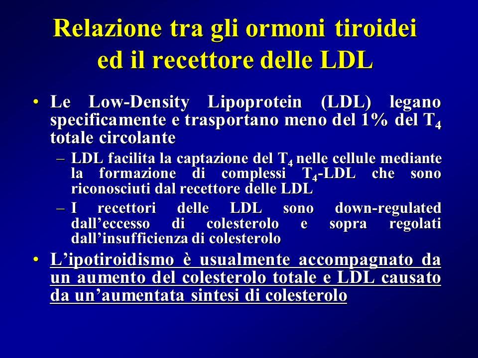 Relazione tra gli ormoni tiroidei ed il recettore delle LDL Le Low-Density Lipoprotein (LDL) legano specificamente e trasportano meno del 1% del T 4 t