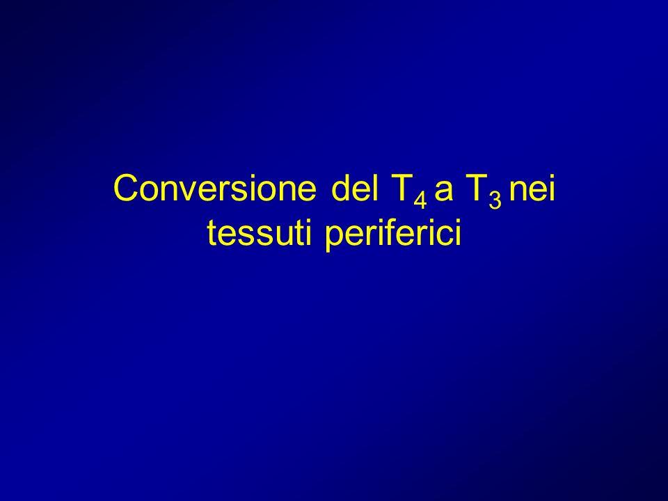 Conversione del T 4 a T 3 nei tessuti periferici