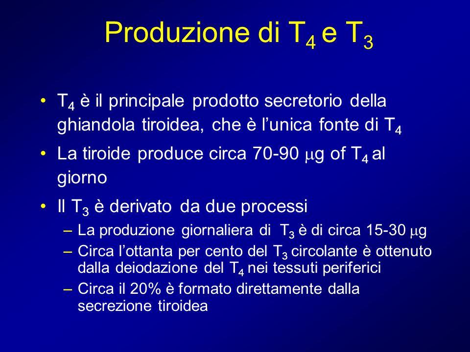 Produzione di T 4 e T 3 T 4 è il principale prodotto secretorio della ghiandola tiroidea, che è lunica fonte di T 4 La tiroide produce circa 70-90 g o