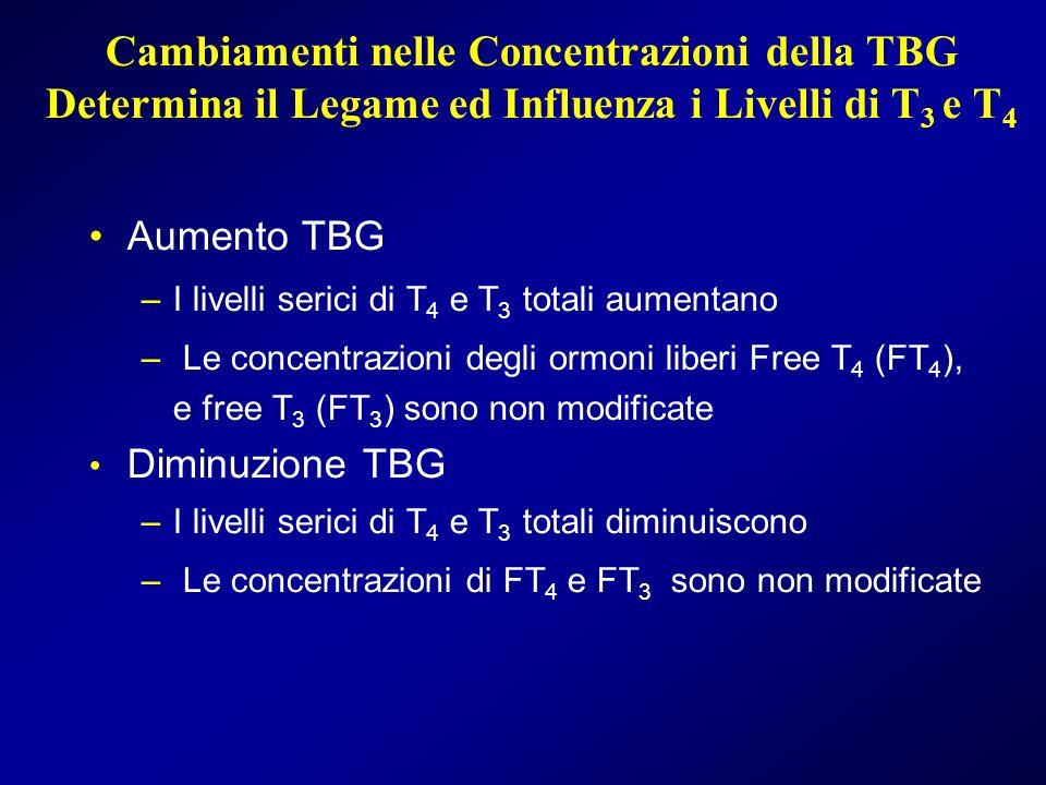 Cambiamenti nelle Concentrazioni della TBG Determina il Legame ed Influenza i Livelli di T 3 e T 4 Aumento TBG –I livelli serici di T 4 e T 3 totali a
