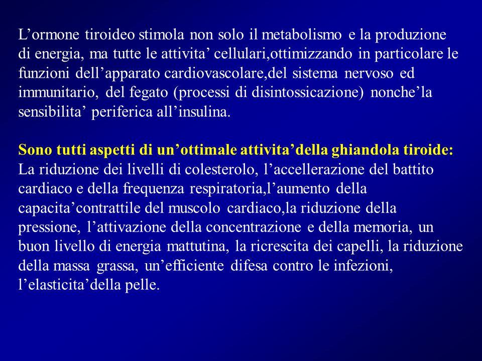 Lormone tiroideo stimola non solo il metabolismo e la produzione di energia, ma tutte le attivita cellulari,ottimizzando in particolare le funzioni de