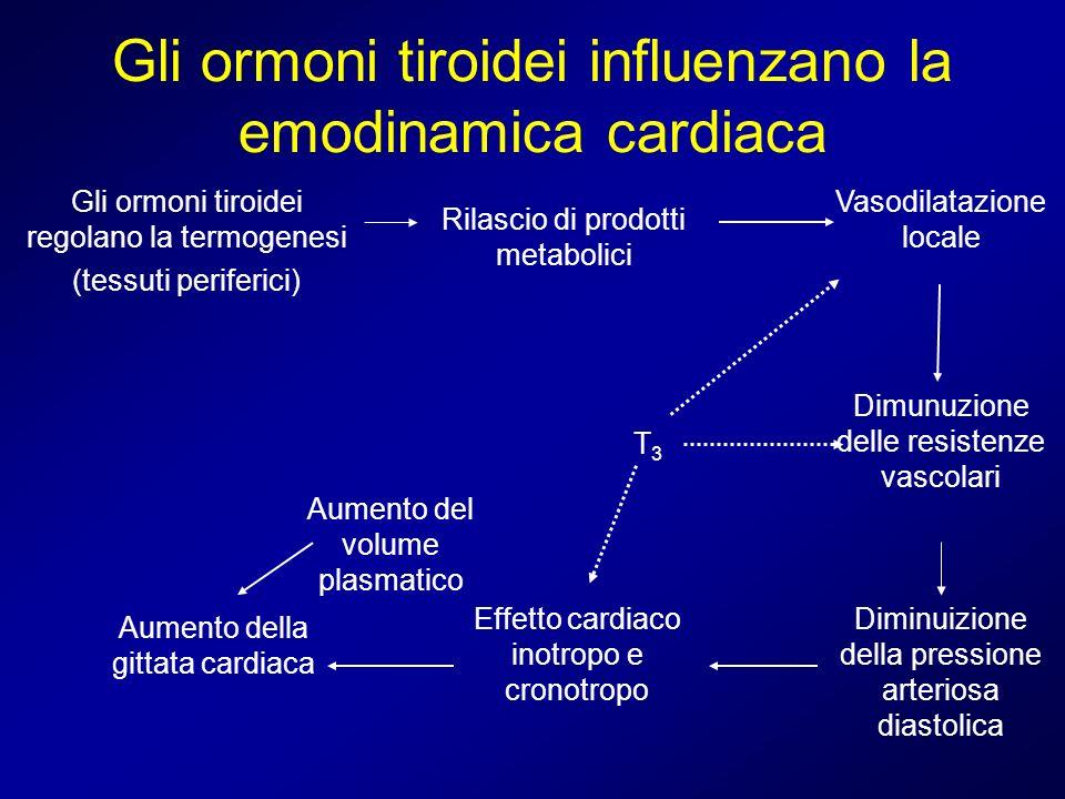Gli ormoni tiroidei influenzano la emodinamica cardiaca Gli ormoni tiroidei regolano la termogenesi (tessuti periferici) Rilascio di prodotti metaboli
