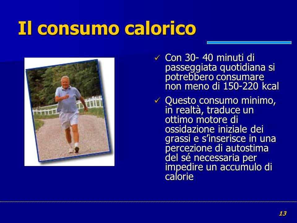 13 Il consumo calorico Con 30- 40 minuti di passeggiata quotidiana si potrebbero consumare non meno di 150-220 kcal Con 30- 40 minuti di passeggiata q
