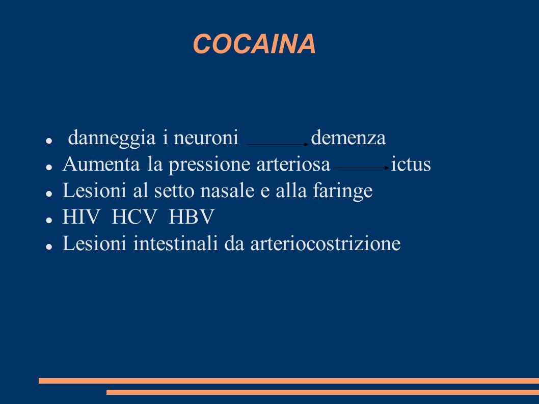 COCAINA danneggia i neuroni demenza Aumenta la pressione arteriosa ictus Lesioni al setto nasale e alla faringe HIV HCV HBV Lesioni intestinali da art