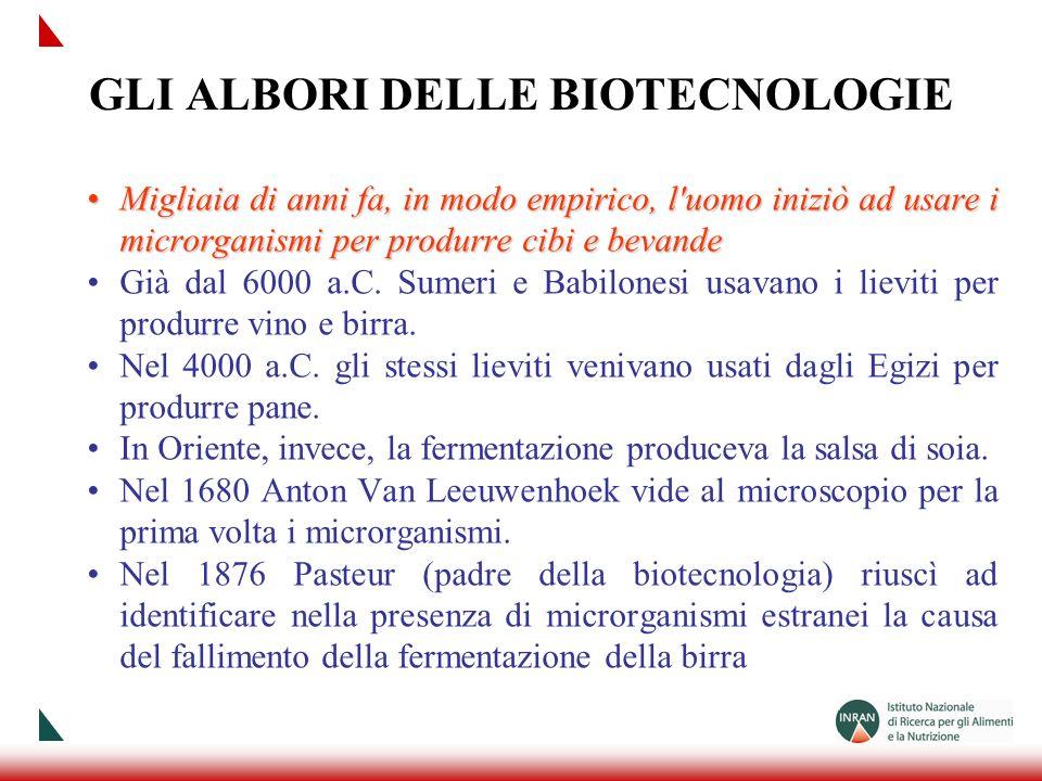 GLI ALBORI DELLE BIOTECNOLOGIE Migliaia di anni fa, in modo empirico, l'uomo iniziò ad usare i microrganismi per produrre cibi e bevandeMigliaia di an