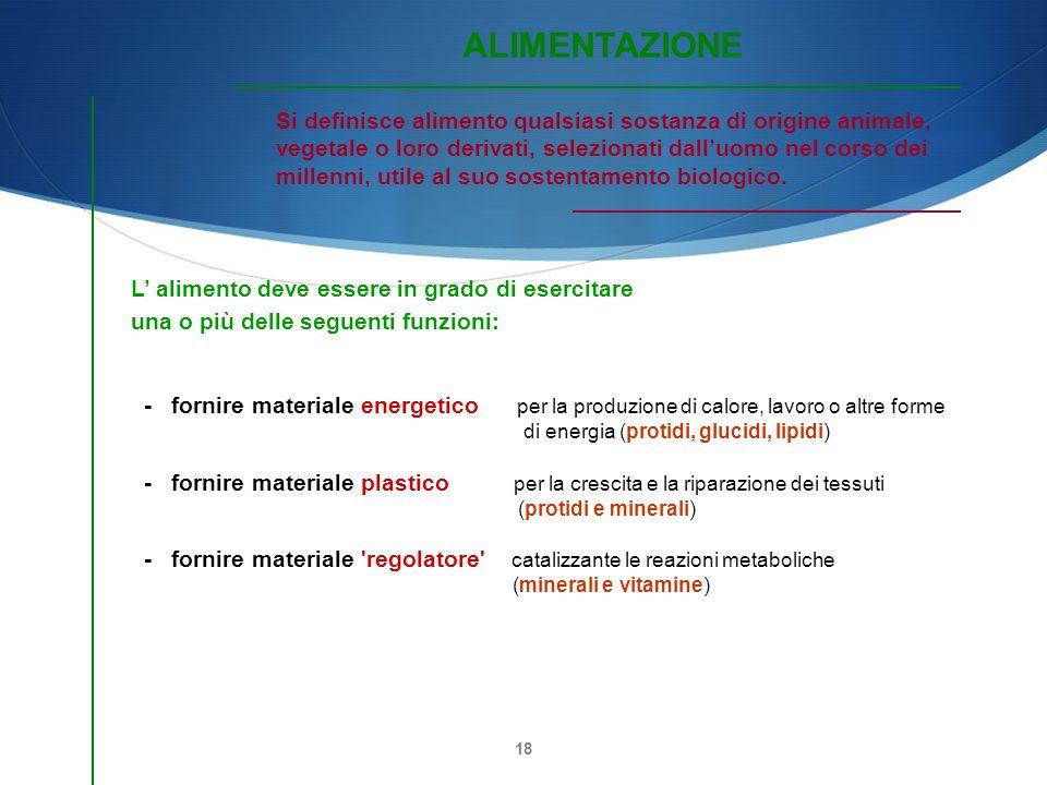 18 L alimento deve essere in grado di esercitare una o più delle seguenti funzioni: - fornire materiale energetico per la produzione di calore, lavoro