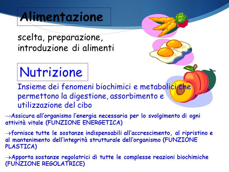 scelta, preparazione, introduzione di alimenti Nutrizione Alimentazione Insieme dei fenomeni biochimici e metabolici che permettono la digestione, ass
