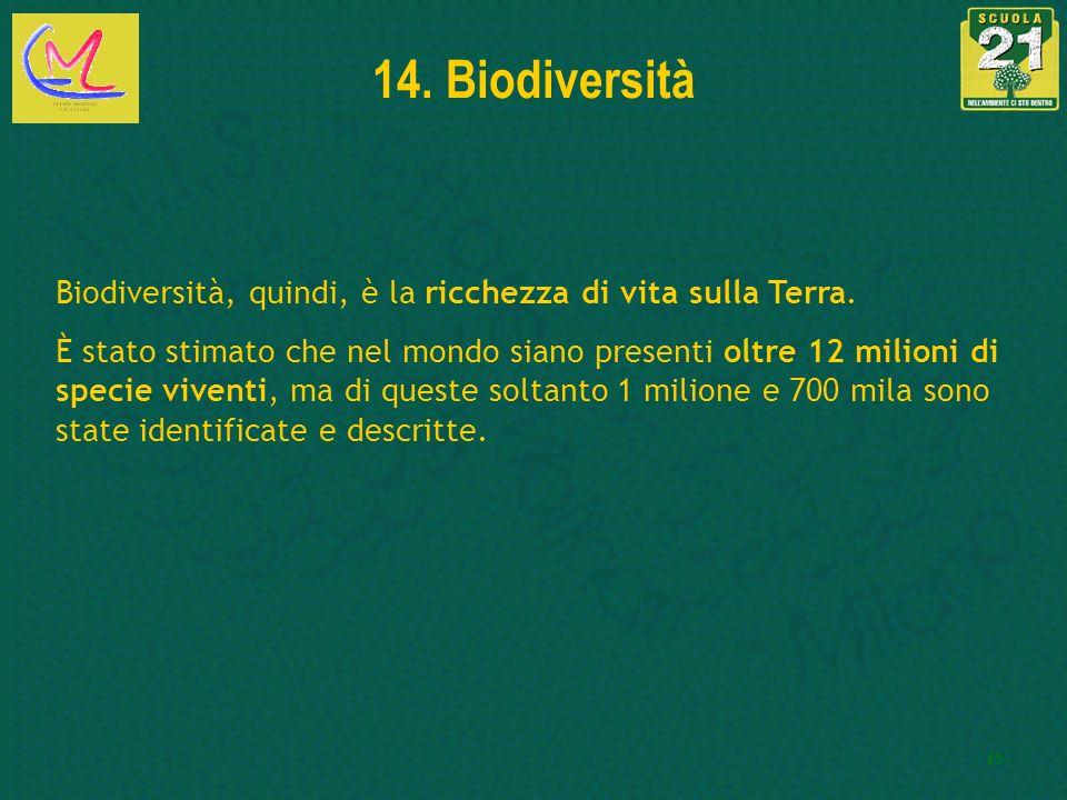 15 14. Biodiversità Biodiversità, quindi, è la ricchezza di vita sulla Terra. È stato stimato che nel mondo siano presenti oltre 12 milioni di specie