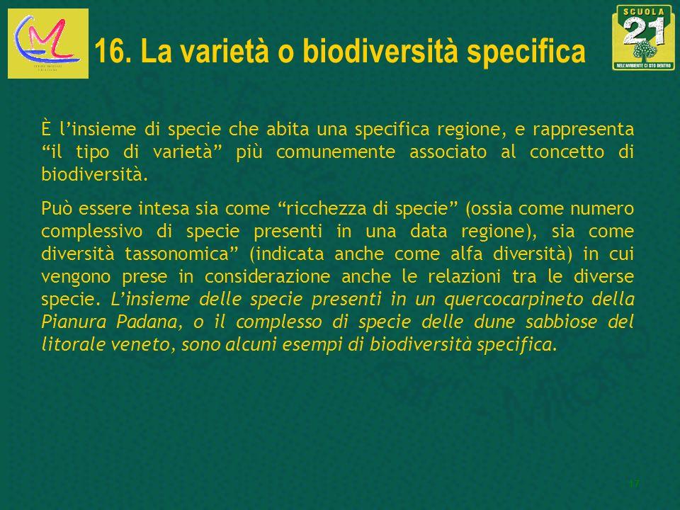 17 16. La varietà o biodiversità specifica È linsieme di specie che abita una specifica regione, e rappresenta il tipo di varietà più comunemente asso