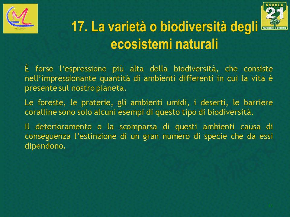 18 17. La varietà o biodiversità degli ecosistemi naturali È forse lespressione più alta della biodiversità, che consiste nellimpressionante quantità