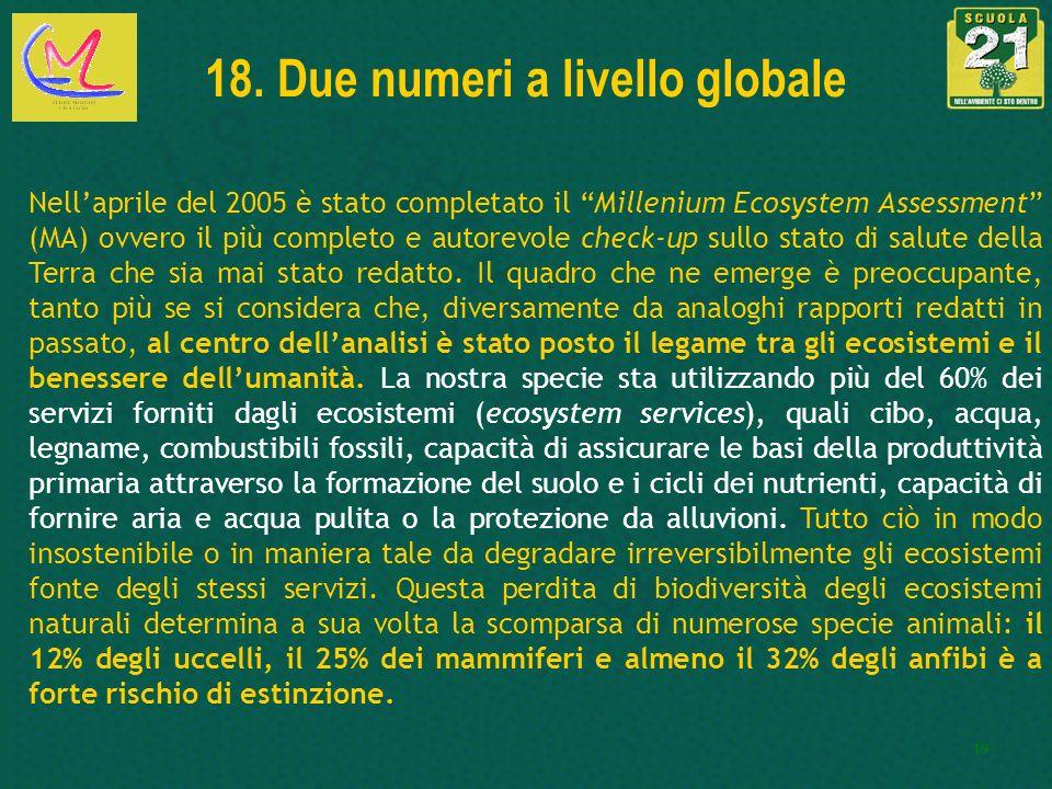 19 18. Due numeri a livello globale Nellaprile del 2005 è stato completato il Millenium Ecosystem Assessment (MA) ovvero il più completo e autorevole