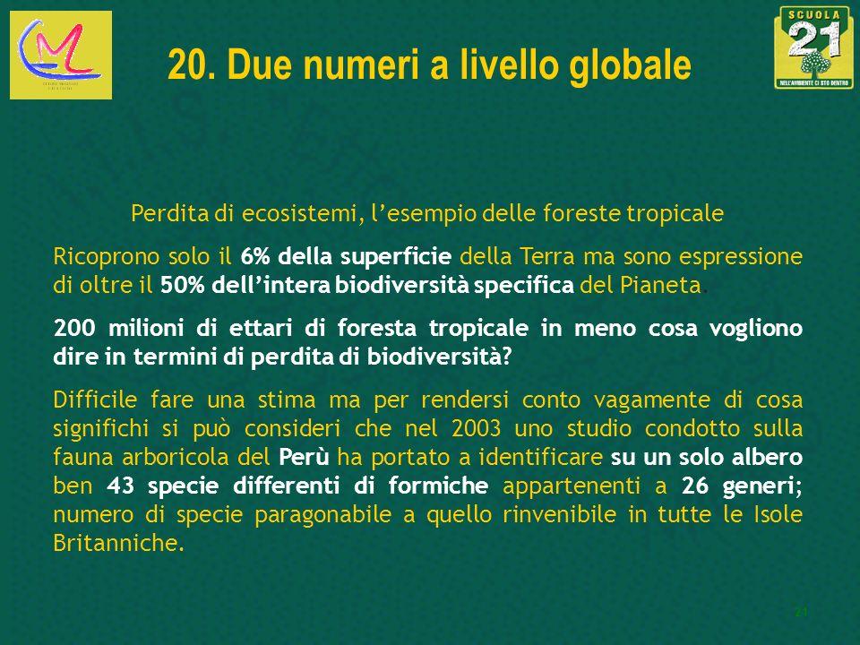 21 20. Due numeri a livello globale Perdita di ecosistemi, lesempio delle foreste tropicale Ricoprono solo il 6% della superficie della Terra ma sono