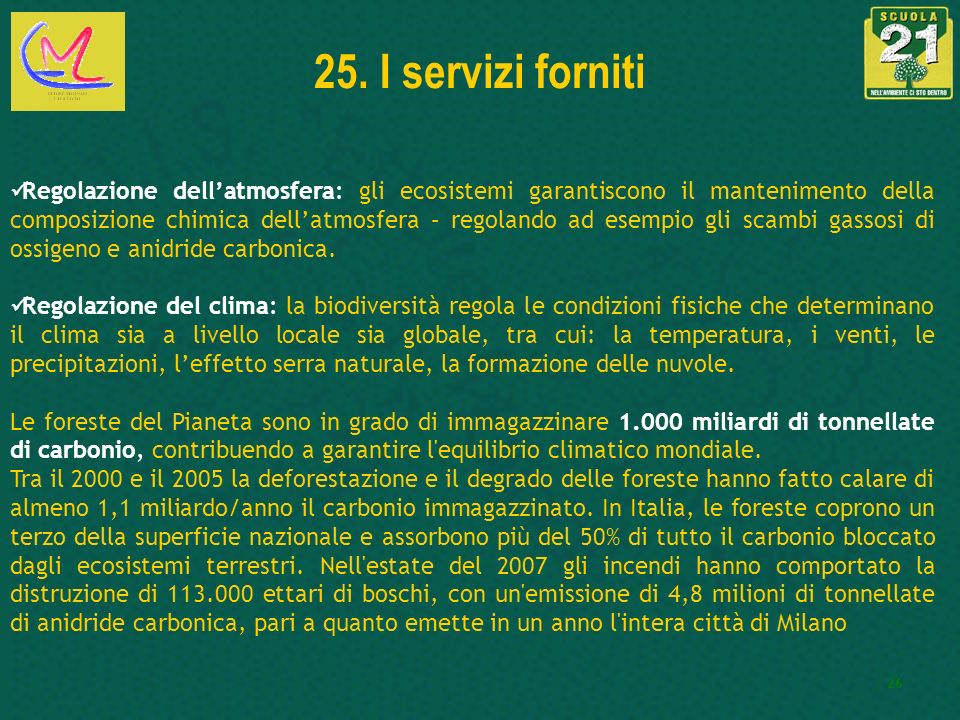 26 25. I servizi forniti Regolazione dellatmosfera: gli ecosistemi garantiscono il mantenimento della composizione chimica dellatmosfera – regolando a