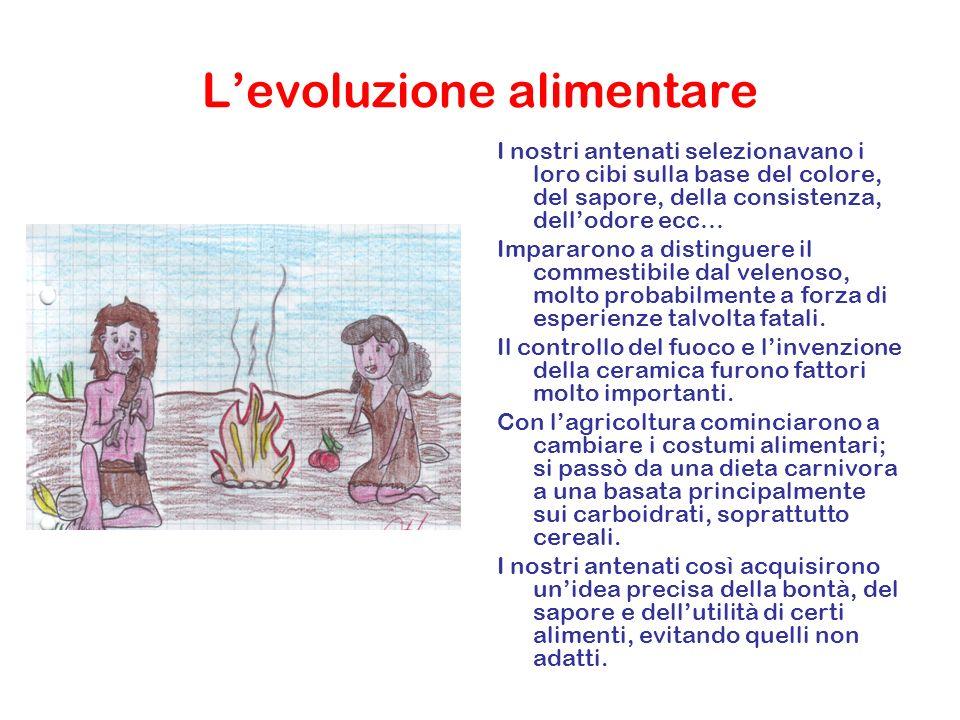 Levoluzione alimentare I nostri antenati selezionavano i loro cibi sulla base del colore, del sapore, della consistenza, dellodore ecc… Impararono a d