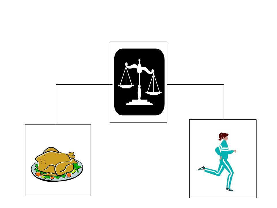 Il consumo energetico Il dispendio energetico giornaliero totale è dato dalla somma di: –Spesa energetica a riposo (Metabolismo basale) –Attività fisica Materiale didattico riadattato per Eli Lilly Italia S.p.A.